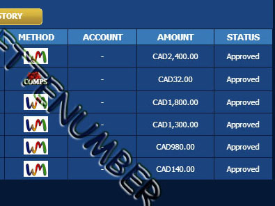 europa casino roulette system